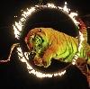 Цирки в Солнечнодольске